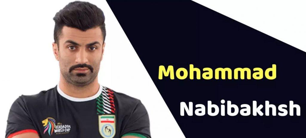 Mohammad Esmaeil Nabibakhsh